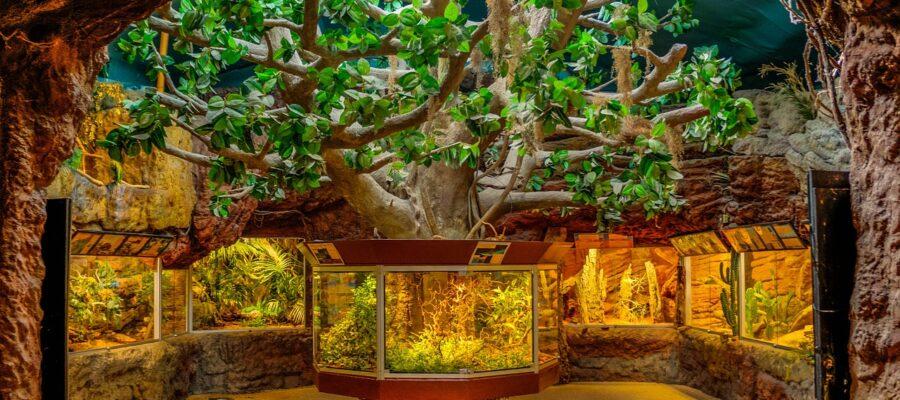 Aquarium-Komplettset online kaufen